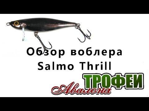 """Обзор воблера Salmo Thrill - магазин """"Трофеи Авалона"""""""