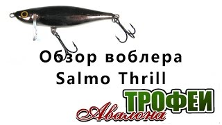 Обзор воблера Salmo Thrill - магазин
