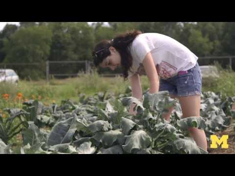Michigan's World Class: Growing community at the campus farm