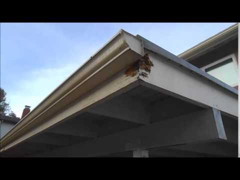 Dry Rot Repair In San Diego 619 850 4794 Youtube