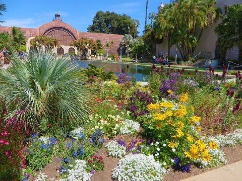 San Diego Ca Balboa Park Gardens Youtube