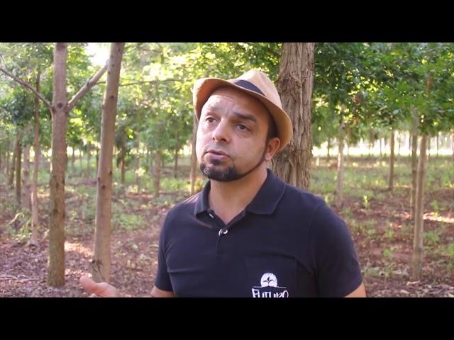 PRA   Programa de Regularização Ambiental   Alternativa com retorno econômico