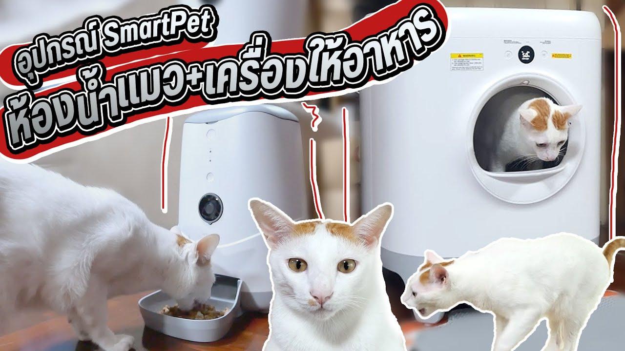 Download รีวิว SmartPet ของนำโชค/ ห้องน้ำแมว/ เครื่องให้อาหาร/ เครื่องกำจัดกลิ่น/ ต่อมือได้