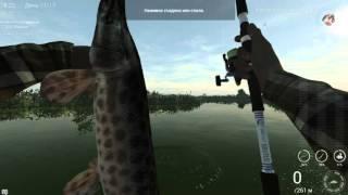 Fishing Planet. Флорида. Трофейный Флоридский Панцирник