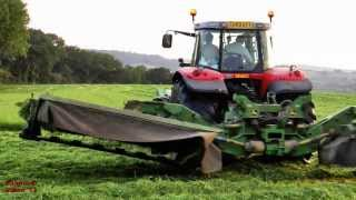 Mowing for Silage with Massey-Ferguson Triples.