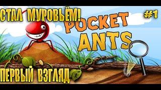 Pocket Ants: Симулятор Колонии муравьёв   #1 (первый взгляд)