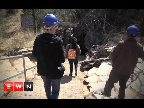 The Cradle of Humankind: A whole new world to discover