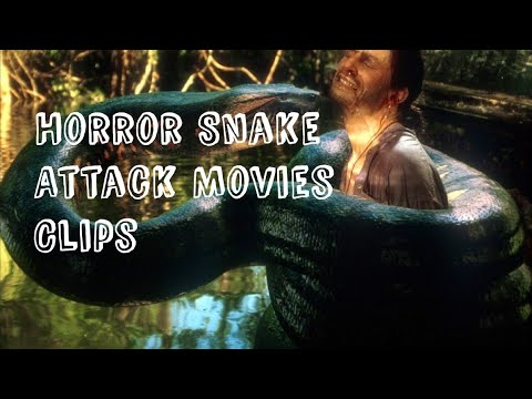 Snake horror movies clip( S Dude) thumbnail