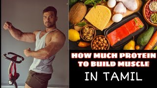 How Much Protein Per day To Build Muscle -