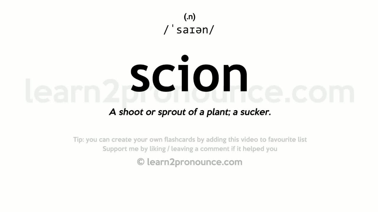 Scion pronunciation and definition
