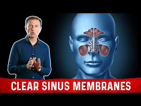 Best Nutrients for Sinus Membranes