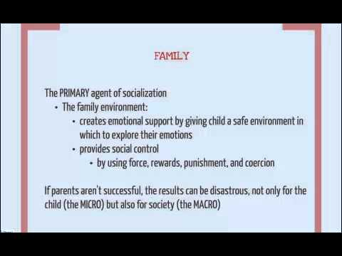 Primary Agents of Socialization - YouTube