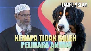 Kenapa Islam MELARANG PELIHARA ANJING? | Dr. Zakir Naik MP3