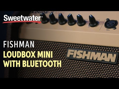 Fishman Loudbox Mini With Bluetooth Overview