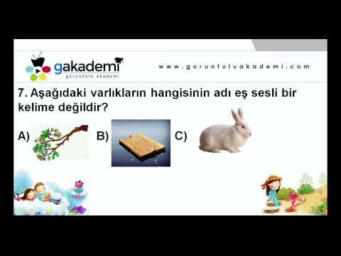 3. Sınıf Türkçe Görüntülü Eğitim Seti Soru Çözümleri
