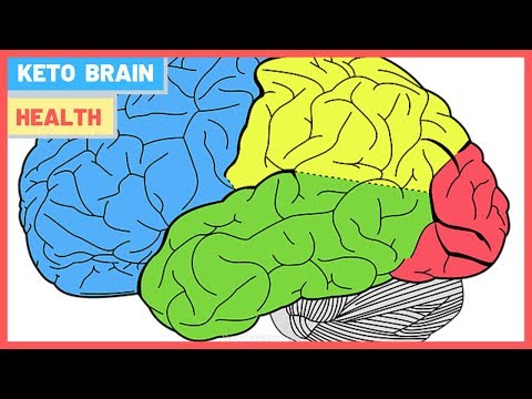 3-ways-your-brain-is-better-on-the-keto-diet---how-ketones-fuel-your-brain
