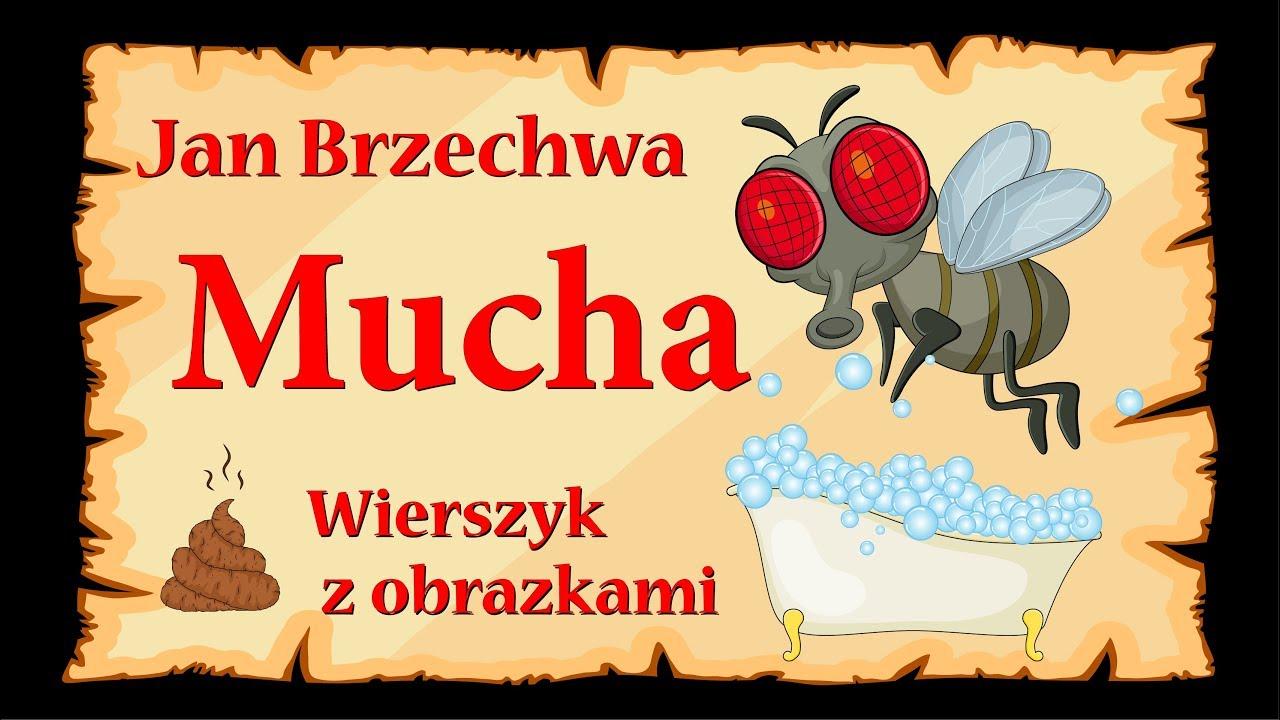 Jan Brzechwa Mucha Wiersze Dla Dzieci
