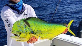 Зміна кольору риби наловити і приготувати махи махи