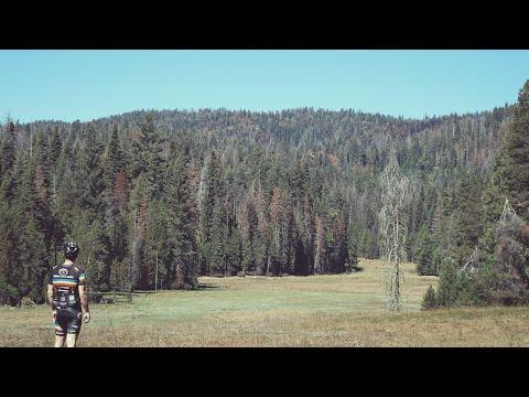 Road Bikes On Dirt Roads (Adventure Ride w/5k ft of climbing in 25mi)