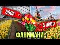 """Как цветочный бизнес противостоит пандемии? Как остановить рост цен на продукты? """"Фанимани"""""""