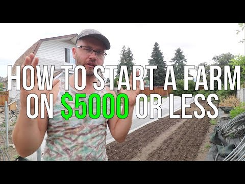 HOW TO START A FARM ON $5000 OR LESS!!!