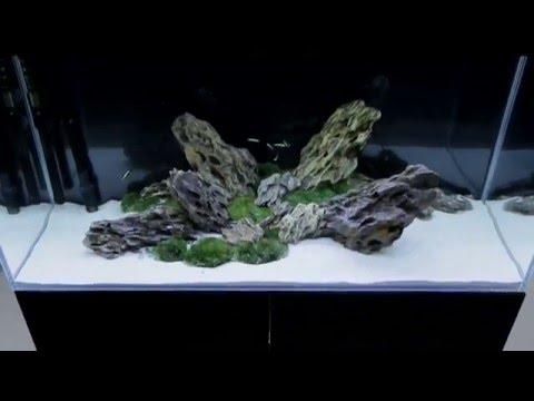 aluminium-aquariumabdeckung-led-t5-zoolicht.de