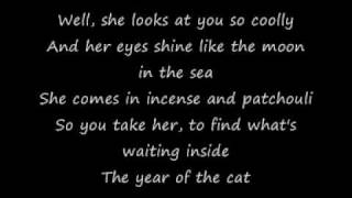 Al Stewart - Year of the Cat (studioversion with lyrics)
