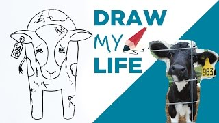Draw My Life 🐮 A Cow in Today