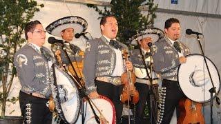 Ach, yai, yai, yai, singe und weine nicht - Mariachi International Mexico in der Nacht