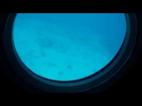 Kona Hawaii Atlantis Submarine 2