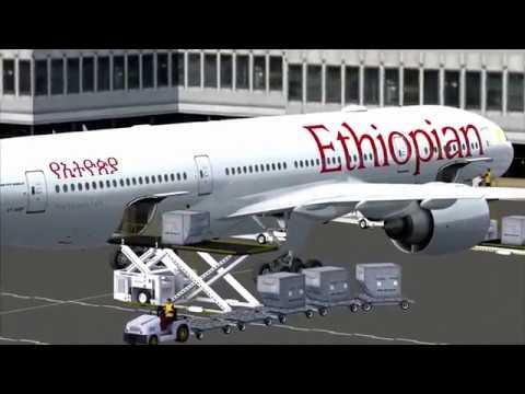 flight from Addis Ababa to Nairobi (Ethiopian)