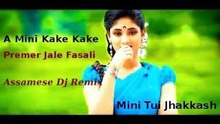 A Mini Kake Kake Premer Jaale Fasali Assamese Dj Song Kusum Koilash Full Bass Mix Dj Vishnu Modak
