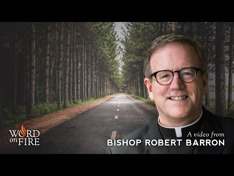 FREE Daily Gospel Reflections from Bishop Robert Barron