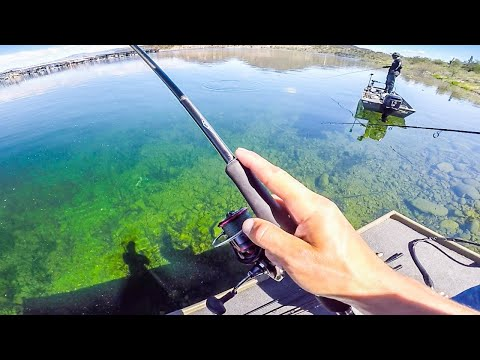 Jon Boat Fishing Tournament Vs Local || 50 State Fishing Tour (Lake Pleasant AZ)