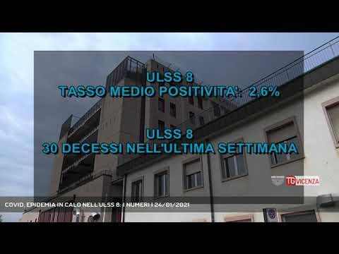 COVID, EPIDEMIA IN CALO NELL'ULSS 8: I NUMERI | 24...