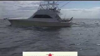 American Ambition Charters - Indian River, Delaware Sport Fishing Charter Boat