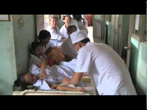 Cancer In Vietnam Cancerindex