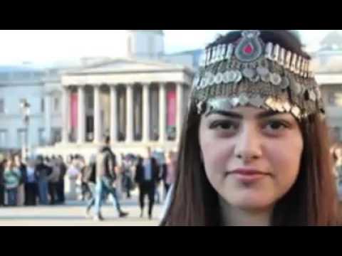 شكلي پشتو سندره Nice Pashto Song thumbnail