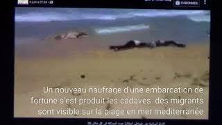 Gambar cover Le sort des migrants avec matoub lounes rip