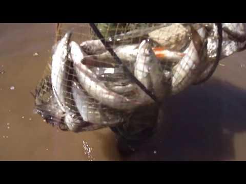 смех и слезы на рыбалке