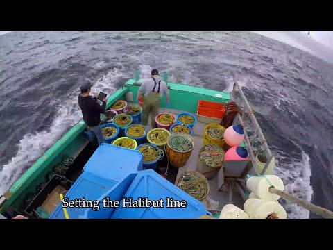 AMAZING HALIBUT FISHING VIDEO 2 - Cape Breton -BIG HALIBUT FISHING
