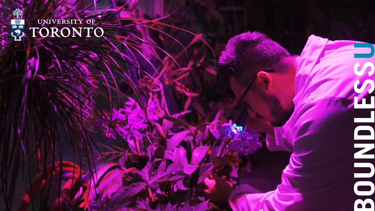 Curiosity: The Horticulturalist (ft. Tom Gludovacz)