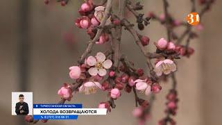 В Казахстан возвращаются холода