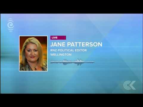 Metiria Turei was 'hindering' Green Party