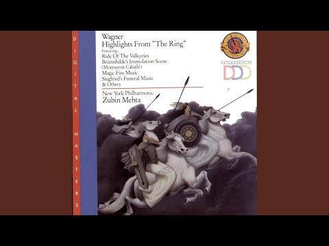 Das Rheingold, WWV 86A: Entry of the Gods into Valhalla (Instrumental)