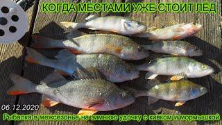 КОГДА МЕСТАМИ УЖЕ СТОИТ ЛЁД Рыбалка в МЕЖСЕЗОНЬЕ на ЗИМНЮЮ УДОЧКУ с кивком и МОРМЫШКОЙ 06 12 2020