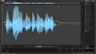 Leveler in iZotope RX 5 Advanced Audio Editor | Before and After Audio Exampl