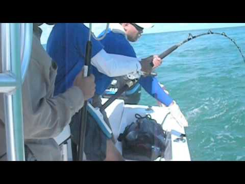 FISH FINDER FRENCH GUYANA TOURNAMENT 2  [ FISH FINDER ]