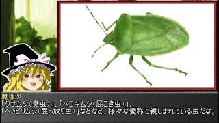 ゆっくり霊夢とやる夫が学ぶ 昆虫大百科 part30
