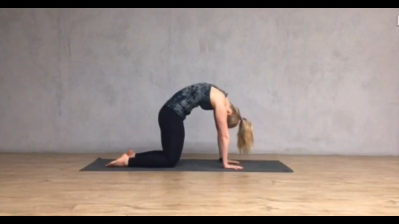 Cat Cow Pose Youtube